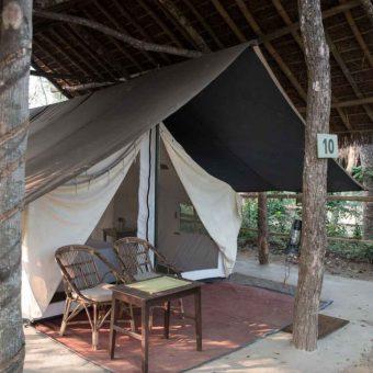 Tiger Tops Tharu Village